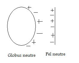 globuspel1