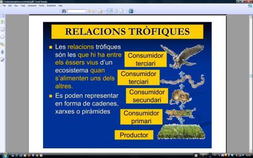IES Josep Font Trias - Ciències Naturals