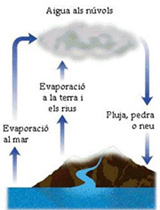 a-cicle_aigua-4