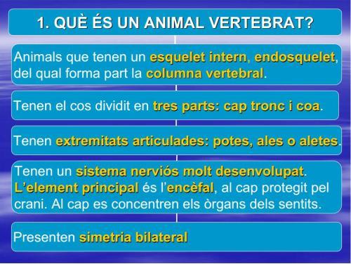 IES Josep Font i Trias - Ciències Naturals