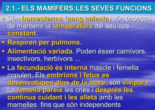 IES Josep Font Tries - Ciències Naturals