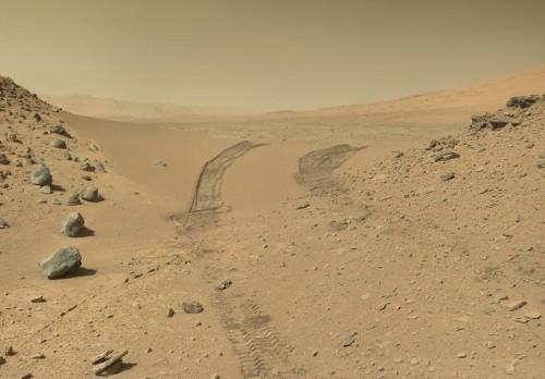 Creuant Dingo Gap a Mart