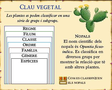 Clau vegetal http://www.edu365.cat/aulanet/naturalesa/data/clas3p.htm