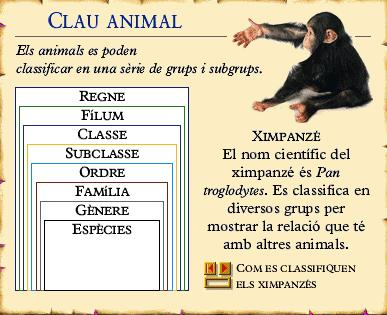 Clau animal http://www.edu365.cat/aulanet/naturalesa/data/clas2p.htm